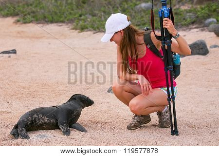 Baby Galapagos Sea Lion Looking At Young Woman On North Seymour Island, Galapagos National Park, Ecu