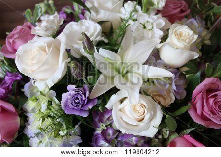 flowers white purple pink