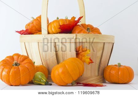 Pumpkins and a bucket