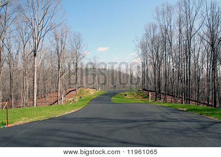 An empty street in a new subdivision