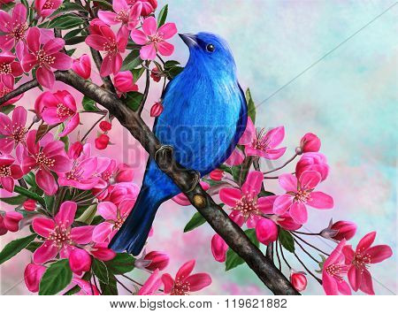 bright branch blue bird of paradise blooming red apple