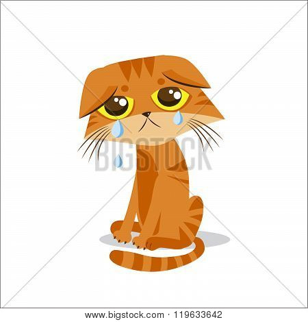 Sad Crying Cat. Cartoon Vector Illustration. Crying Cat Meme. Cat Face. Cat Picture. Crying Cat Emoticon. Cat Baby. Cat Tears. Cat Wants To Come In. Cat At Night. The Poor Cat. Weeping Cat.