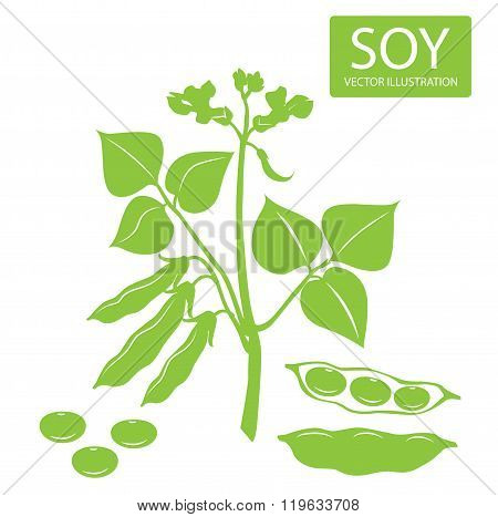 Soybeans Silhouette. Vector Illustrations Set On A White Background. Soybeans Protein. Soybeans For Sale. Soybeans Estrogen. Soybeans Recipe. Soybeans Futures. Soybeans Plant. Complete Protein.