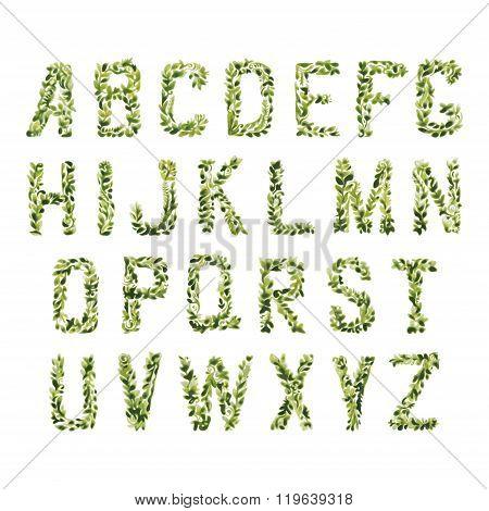 Foliage Decorative Green Font