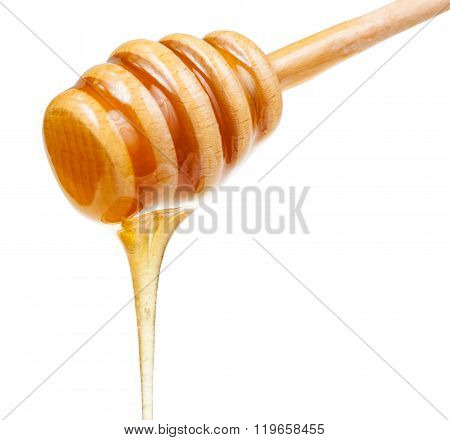 Clear Honey Flows Down From Wooden Stick Close Up