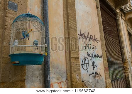 Budgie Bird Cage On An Wall- Old Nicosia City Centre.