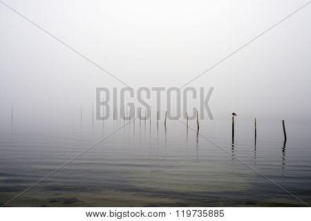 Fishing Stakes