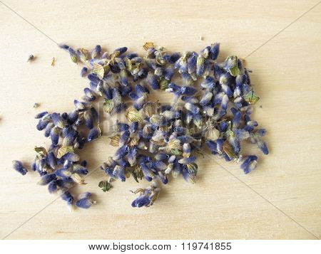Lavender flowers, Lavandulae flos