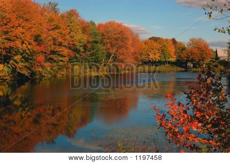 Attum In New England, Boston, Massachusetts