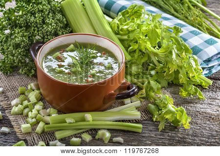 Potage soup made from fresh domestic celery with spices