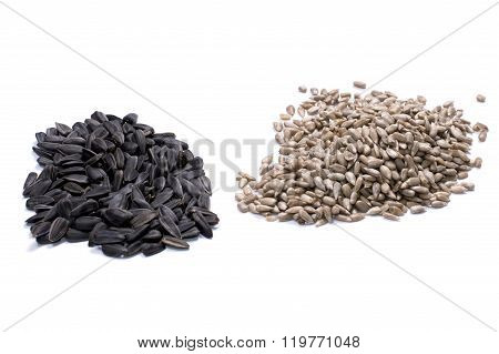 Two Hills Of Seeds Of A Sunflower On A White Background