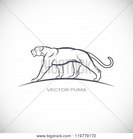 Label with a picture of puma