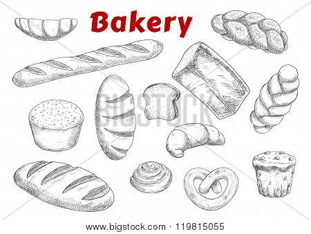 Bakery sketches with bread and pastry