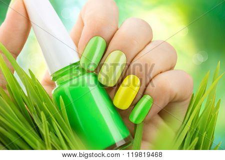 Spring manicure. Fresh Nature trendy green nails. Beautiful nail polish with grass. Green and yellow colors Eco Nail art manicure. Bottle of Nail Polish. Fashion Beauty hands. Stylish Nailpolish