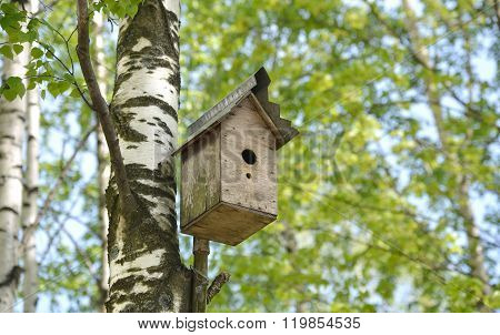 Old Bird House.