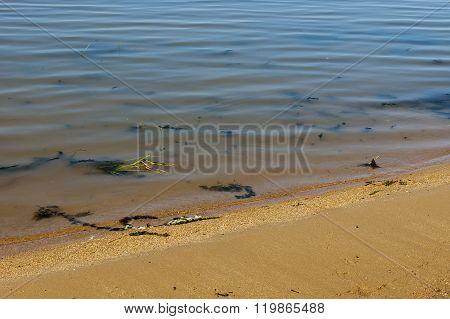 Authentic shore at Rabisha  lake near by Magura cave, Belogradchik, Bulgaria poster