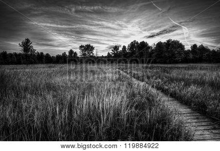 Irwin Prairie Sunset