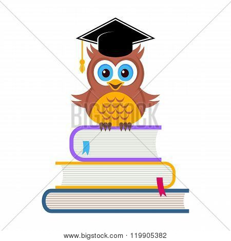 Cute Owl With Graduation Hat