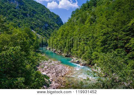 Canyon of mountain river Tara.