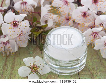natural facial cream with spring blossom, Fresh as Spring Flowers
