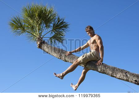 Man Sitting On Trunk Of Tropical Palm Tree