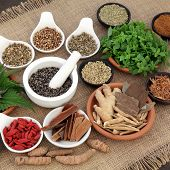 Healing herb and spice selection used in natural alternative herbal medicine for men over hessian background. Selective focus. poster