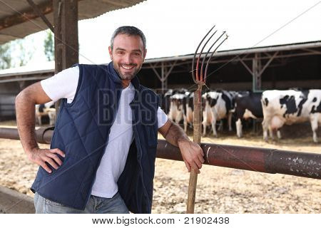 farmer with a hayfork in front of cowshed
