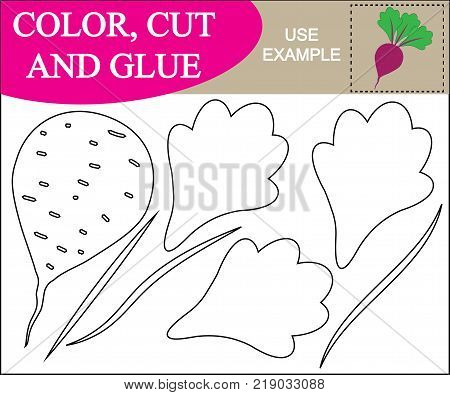 Color cut and glue to create the image of beet (vegetable). Educational game for children. Vector illustration.