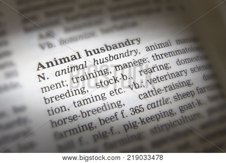 Cleckheaton, West Yorkshire, Uk: Thesaurus Page Showing Definition Of Word Animal Husbandry, 30th Ma