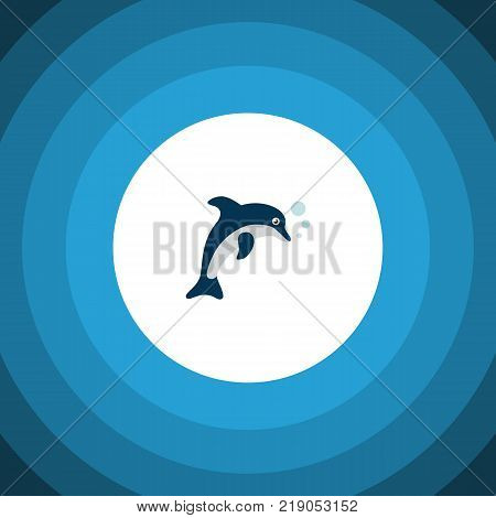 Isolated dolphin icon flat. Playful fish vector element can be used for dolphin, playful, fish design concept.