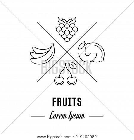 Vector logo fruits. Hipster emblem label or banner for fruits. Line sign with elements. Concept brand.