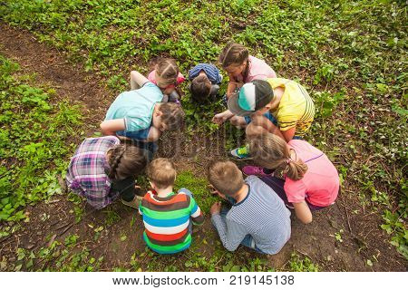 Group of children who are considering something carefully, sitting in a circle on the background of nature