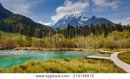 Zelenci Springs, Martuljek Mountains In The Background