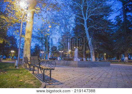 Autumn night landscape in the park alley trees. City night park in autumn with paths strewn. Bench under a lamp In the park at night