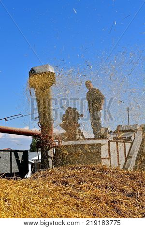 The chaff, dust, and straw leaving the blow pipe of an old threshing machine hide the  unidentified operator of the thresher.