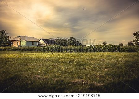 Dramatic agricultural countryside landscape with moody sunset sky and cultivated field on farmer's plantation