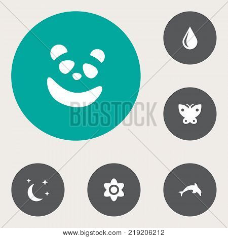 Collection Of Blob, Moth, Bear And Other Elements.  Set Of 6 Natural Icons Set.