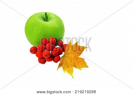green apple berries with a wedge leaf isolated on white background concept of changing the season autumn still life