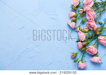 Border from pink roses flowers on light blue textured background. Floral still life. Selective focus. Place for text. Top view.
