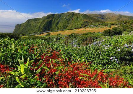 Pozo da Alagoinha, also known as Pozo Ribeira do Ferreiro, Flores Island, Azores Archipelago, Portugal, Europe