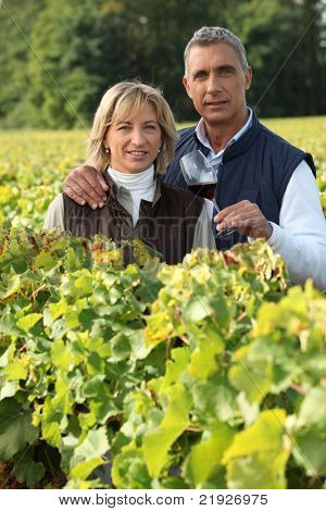couple in the vines, man holding a red wine glass