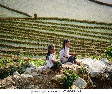Sapa Vietnam - May 28 2016. Children sitting on rice field in Sapa Vietnam. Sapa is a frontier township and capital of Sa Pa District in Lao Cai Province in north-west Vietnam.