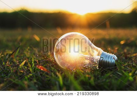 concept idea of power energy with light bulb on grass and sunset in nature