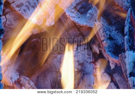 Close up of camp fire flames and fire Charcoal fire wood
