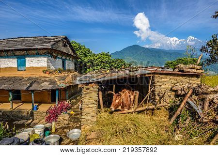 Panoramic view of the Himalayas mountains, a farmhouse and a stall near Pokhara in Nepal