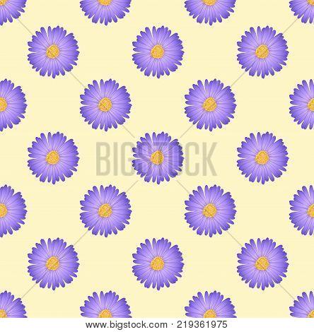 Purple Aster Flower on Ivory Beige Background. Vector Illustration.