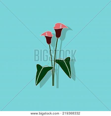 paper sticker on stylish background of flower calla
