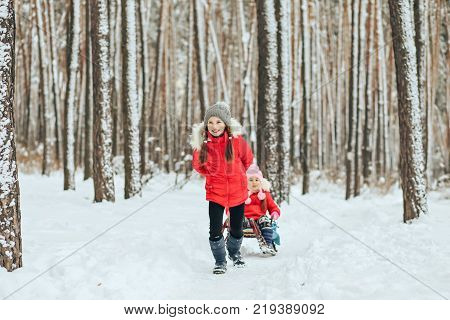 The sister is sledging her sister in the winter in the forest.