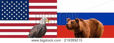 Concept of relations USA and Russia. American and Russian flags. Bald Eagle brown bear. Relationship conflict confrontation between USA and Russia. American and russian partnership collaboration