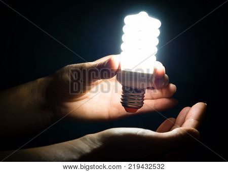 Energy Saving Lamp In The Hands Of A Woman